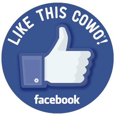 Facebook CoworkingCheConta Milano Cadorna